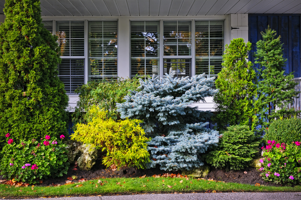 Arborist Landscaping Trends