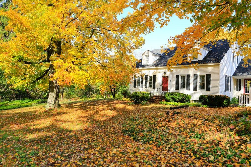 Autumn Tree Services