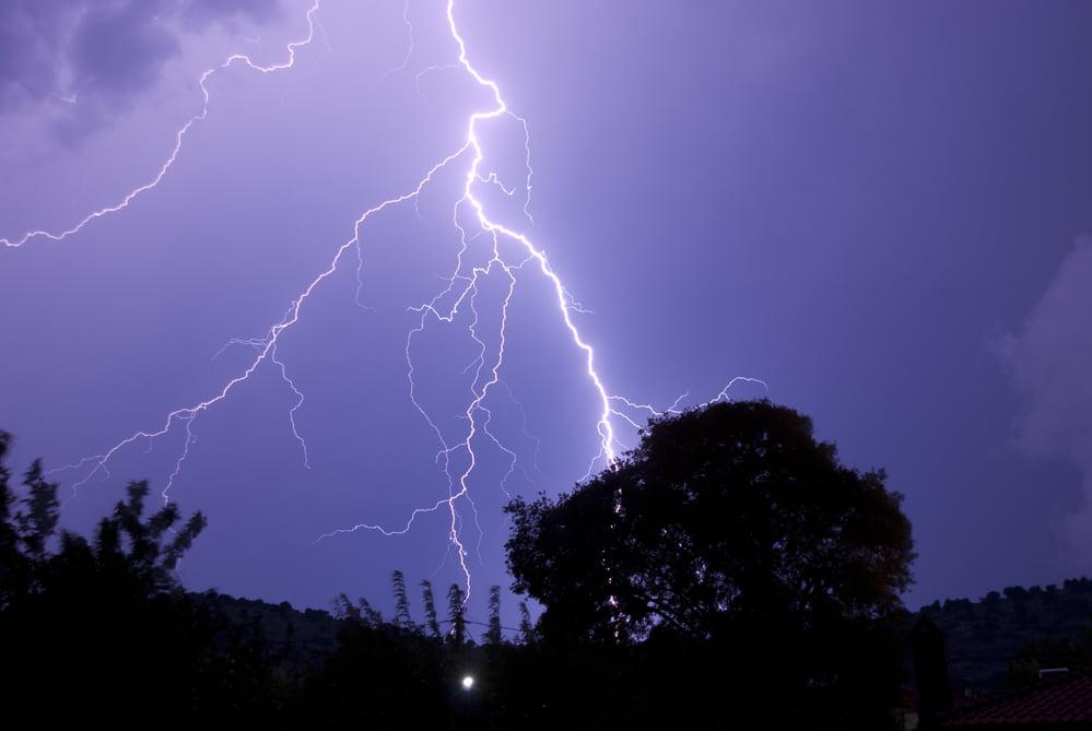 Handling Tree Damage from a Lightning Strike