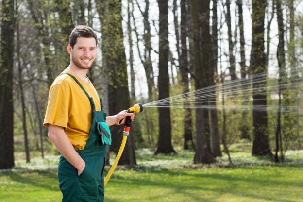 need to know watering trees