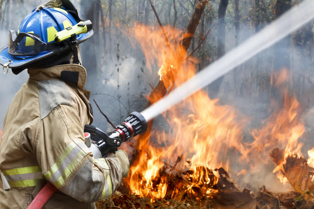 tree property fire risks summer